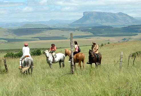 drakensberg-horse-trail