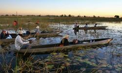 BOTS-Okavango-Delta-3-250x150