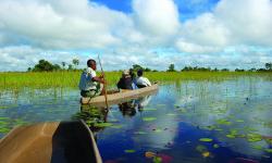 BOTS-Okavango-Delta_2-2-250x150