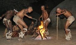 BOTS-Bushmen-250x150
