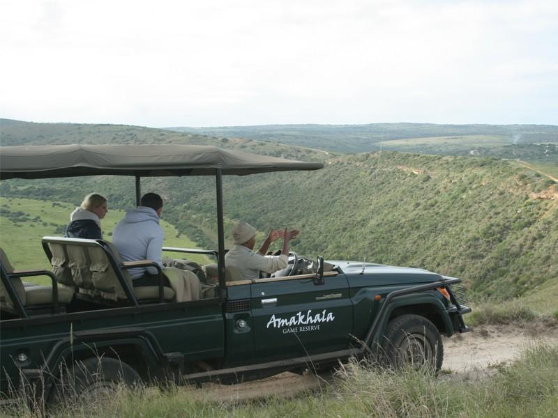 amakhala-jeep