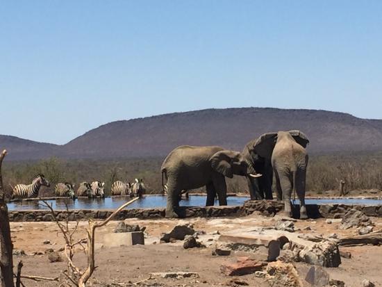 mosetlha-bush-camp-eco