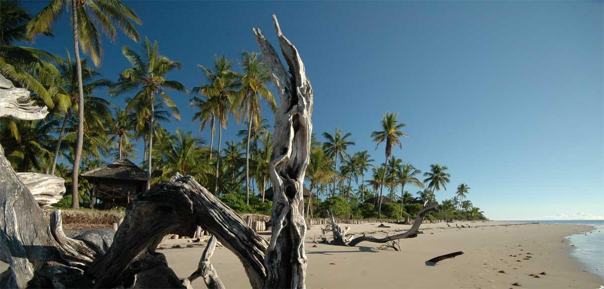 saadani-beach