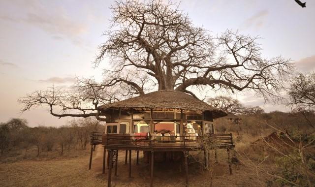 phoca_thumb_l_tree-house-lit-inside