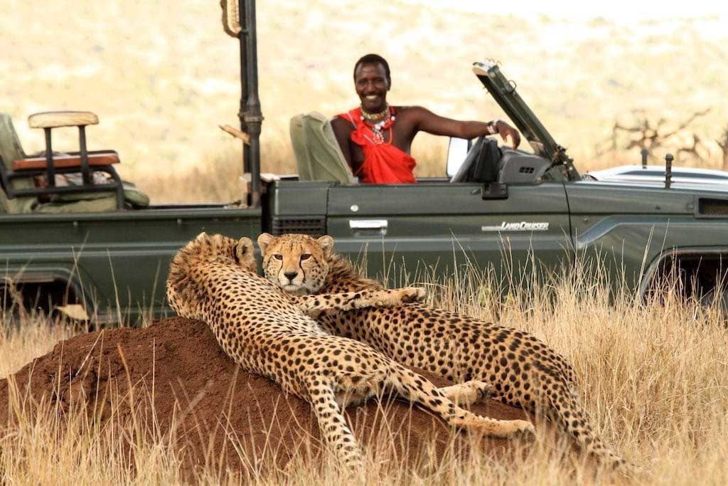 Lewa Wilderness game drive nanyuki area
