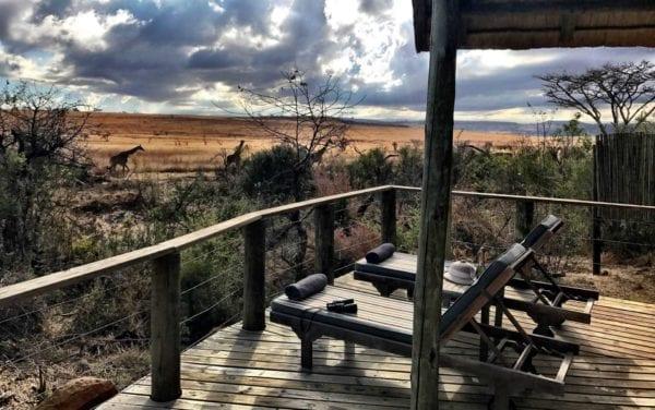 Två giraffer syns i bakgrunden, i förgrunden två tomma solstolar varav det ligger en kikare på en. Denna lodge ligger i Nambiti Plains, i KwaZulu-Natal
