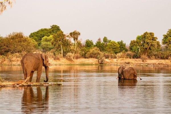 Zambezi River, Sunset cruise, Victoriafallen