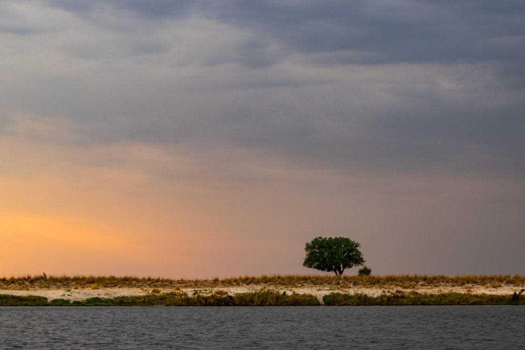 Chobefloden sedd från Chobe Princess