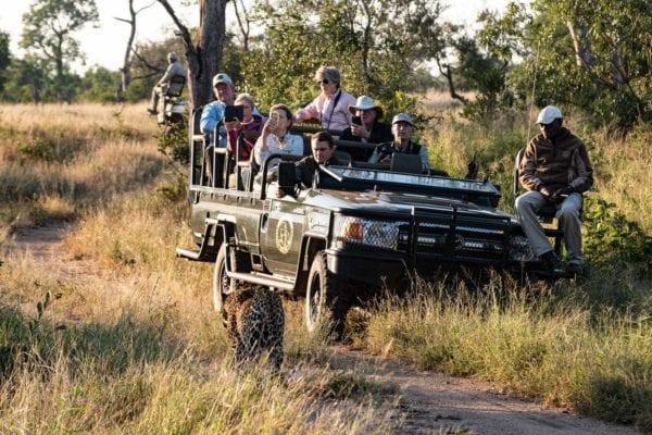 En safaribil full med turister tittar på en leopard som långsamt passerar förbi. Deras Kläder på safari är kakifärgade och de satsar också på lager på lager . vilket är helt rätt när du ska på safari