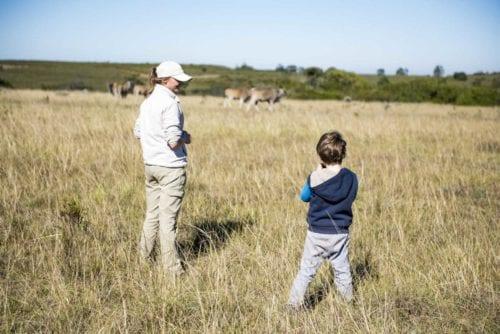 så får barnen roligt på safari