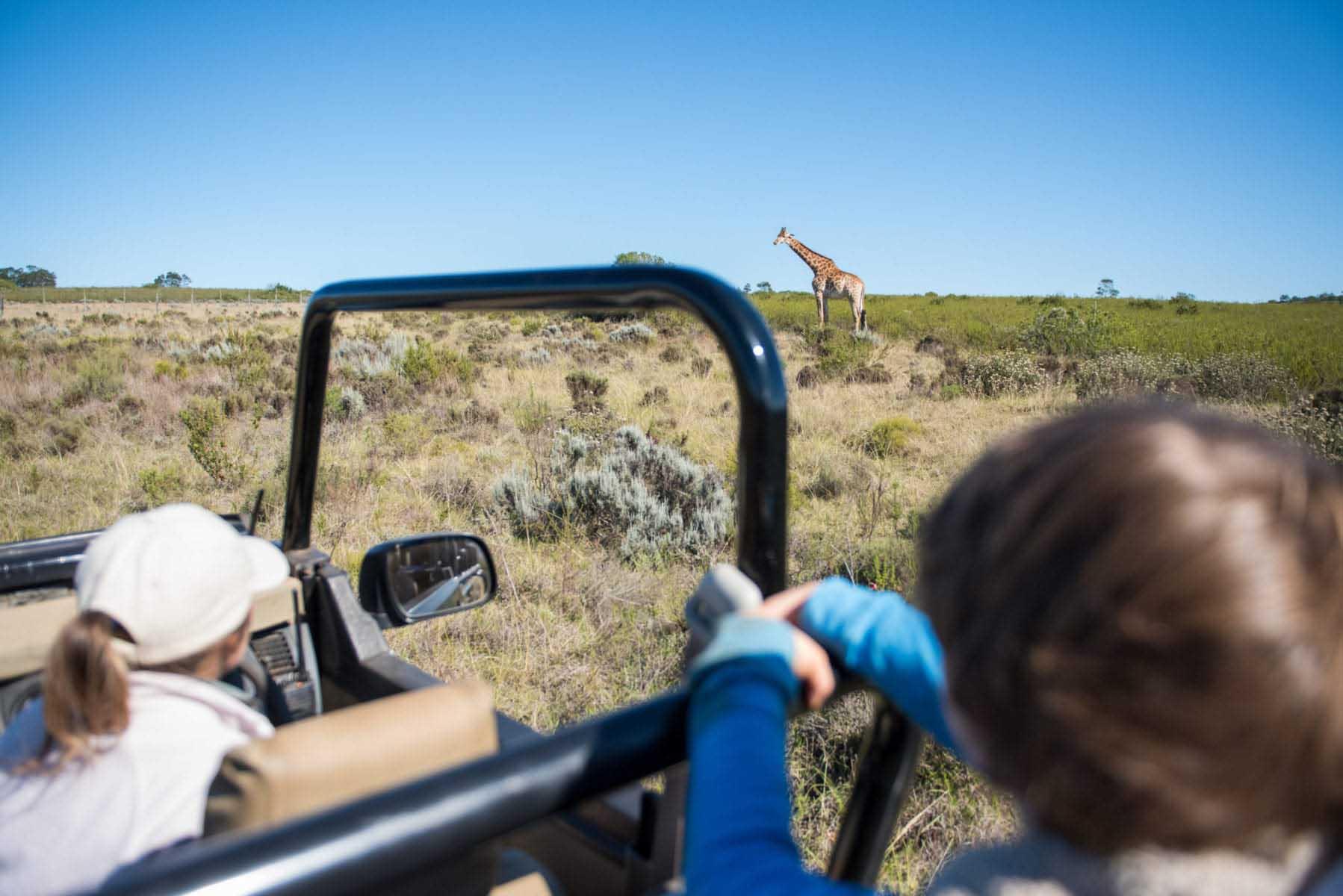 barn på safari - det här behöver du tänka på