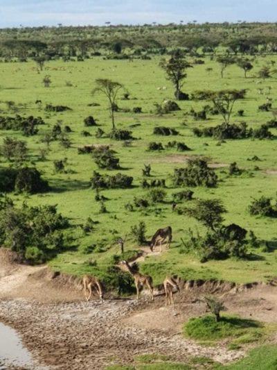 Utsikten från Eagle View, Basecamp Explorer Mara Naboisho