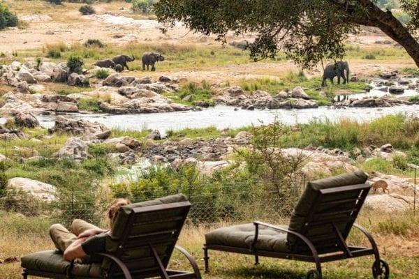 safari i nationalpark eller privat reservat