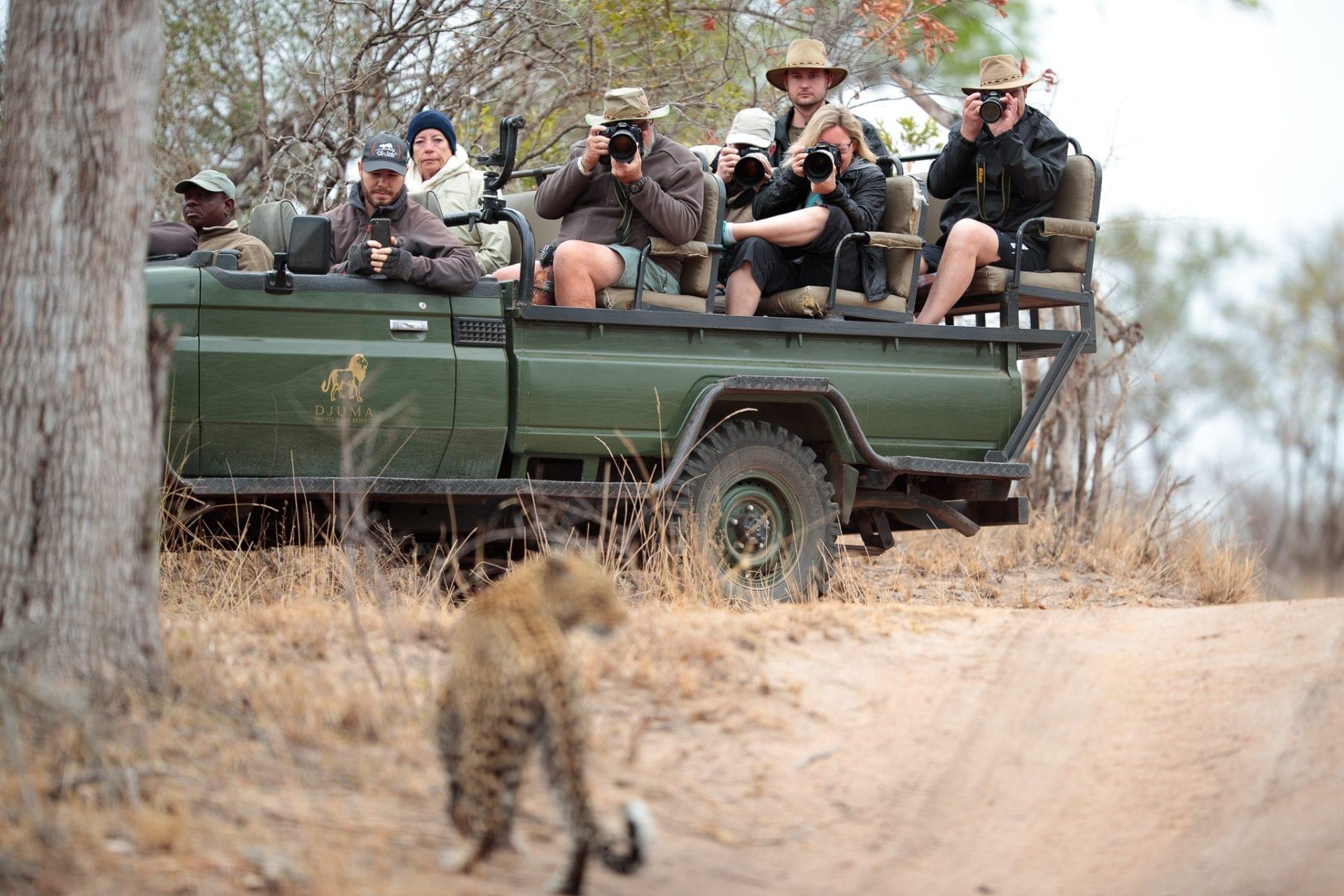 fotosafari Sydafrika
