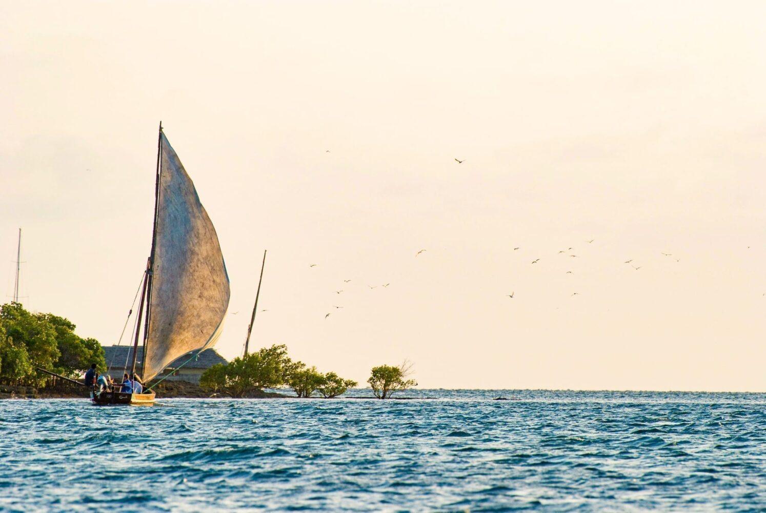 en dhow i Lamu, den kan du se då får man resa till Kenya