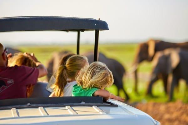 barn på safari i Tanzania, de tittar ut ur hålet i bilens tak och det är suddiga elefanter i bakgrunden.