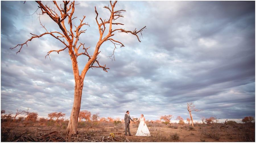 En brud och brudgum står under ett stort afrikanskt träd och en dramatisk himmel, de bär bröllopskläder