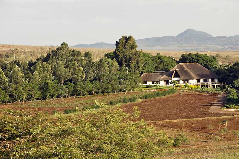 ngorongoro-farm-house-2013-house-view-800